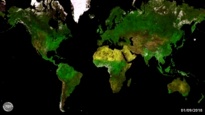 timelapse showing global observations made with Proba-V's Vegetation instrument, created through the Terrascope open source Earth observation platform.
