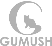 GUMUSH AeroSpace